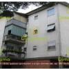 massarosa appartamento 20/07/2018 - foto 1